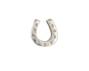Horseshoe - Silver Charm
